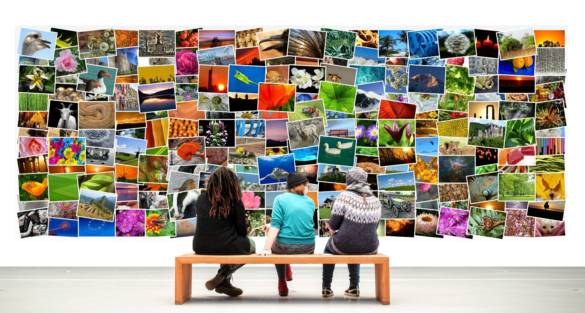 Read more about the article Top 16 Websites for Free Stock Photos – The Definitive List!